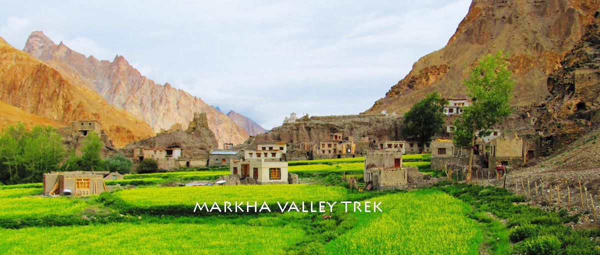 Village of Markha ladakh